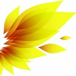 NAHF logo 2016